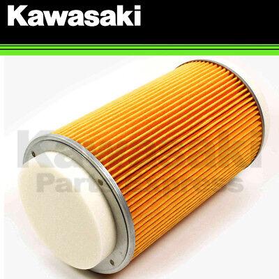Kawasaki OEM Genuine Air Filter 11029-0025 2014-2018 Teryx Teryx4