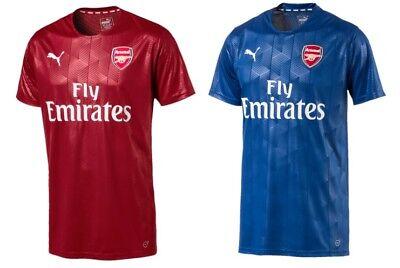 fósil espejo ideología  Arsenal FC Official Puma Stadium Jersey Junior in 2 Colours | eBay