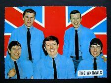 Ancienne Carte Postale The Animals  Année 60