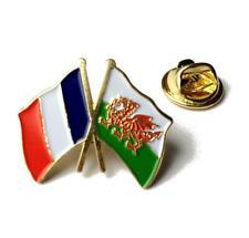 Welsh Dragon Metal Lapel Pin Badge wb66