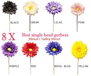8-Single-Head-Stem-Gerberas-best-quality-supreme-colors-All-Colours