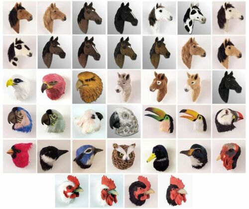 FEATHER MAGNET *REALISTIC TOUCAN SULFUR BREAST COLLECT ANIMAL MAGNETS!