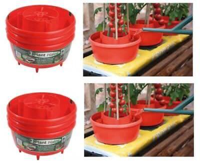 Garland Pianta Aloni Crop Supporto Vasche Da Irrigazione 6 X Tutti Nel 1 Per Far Crescere Borse Rosso-