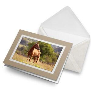 Greetings-Card-Biege-Welsh-Cob-Horse-Pony-Cute-Fun-2277