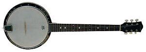 Banjo-bj6-6-saitiges-Mensur-65-8cm-Remo-weatherking-pelliccia-bordo-depositi-by-MSA-N