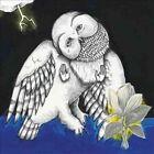 Songs Ohia Magnolia Electric Co Double LP Vinyl 33rpm 2013 Ann Ed