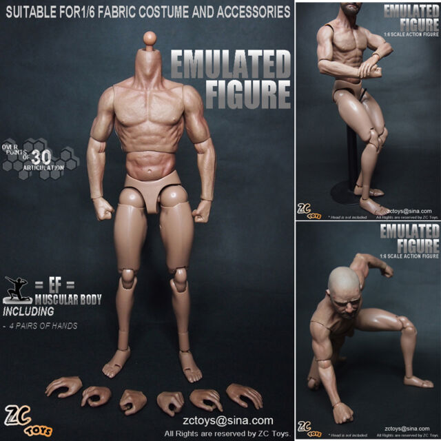 ZC Toys 1/6 Scale Muscular figure Body Similar to TTM19 For Hot Toys
