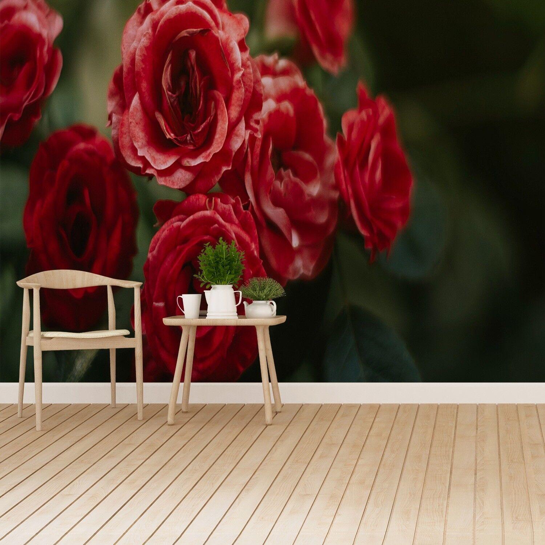 Fototapete Selbstklebend Einfach ablösbar Mehrfach klebbar Rosen Vintage