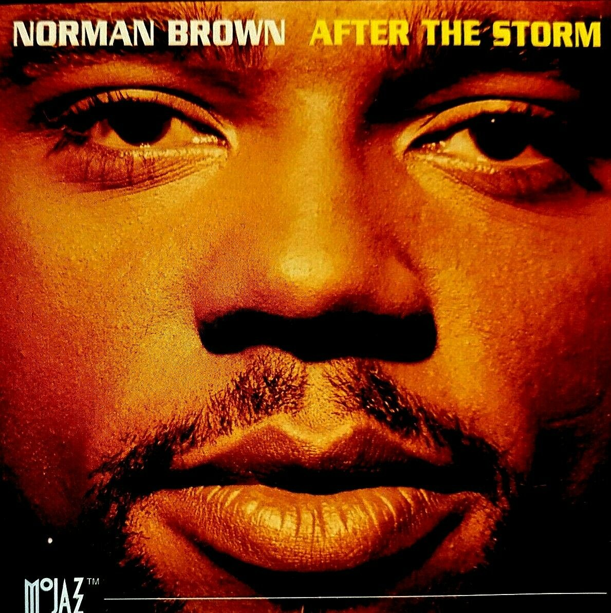 After the Storm by Norman Brown (Guitar) (CD, Mar-1994, Universal  Distribution) for sale online | eBay