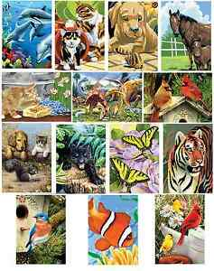 15-DESIGNS-OF-A5-ARTIST-PAINTING-BY-NUMBER-CRAFT-KITS-WITH-GUIDE-PAINTS-amp-BRUSH