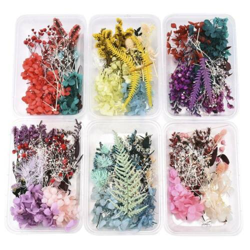1 Box Dried Flowers Plant Aromatherapy Candle Epoxy Resin Pendant DIY Crafts