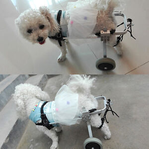 Dog-Wheelchair-for-Small-3-to-15-lbs-Dog-Pets-Behind-legs-Rehabilitation