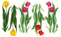 Tatouage Tulips Dry Rub Transfer
