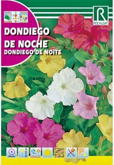 FLORES DONDIEGO DE NOCHE