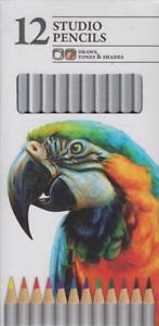 Chiltern-Arts-12-STUDIO-Colour-Artist-PENCILS-For-Drawing-Tones-Shades-Sketching