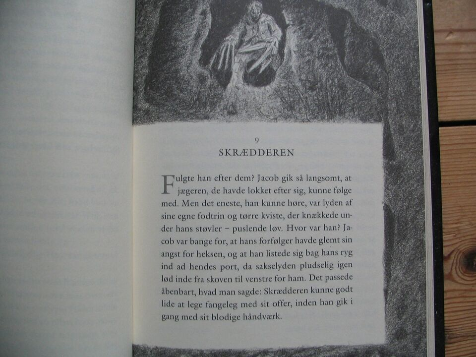 Reckless, Cornelia Funke