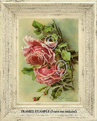 Pink Old Garden ROSES Shabby COTTAGE CHIC C. Klein Romantic Vintage ART PRINT