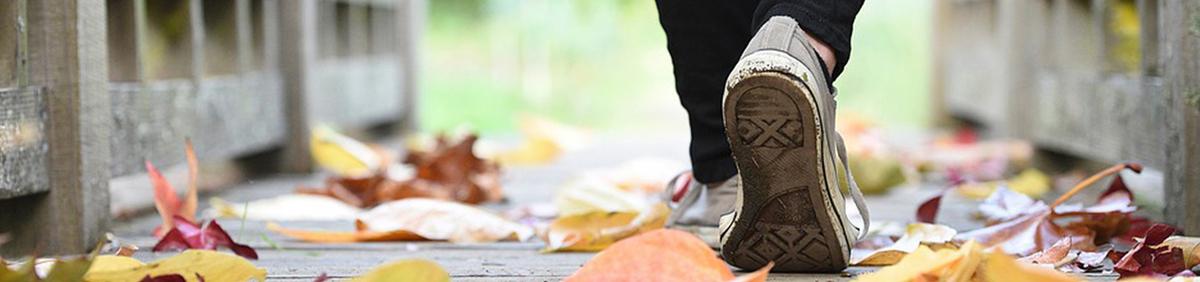 Aktion ansehen Mit Code JOMODO10* 10% auf Schuhe sparen Jetzt bis zum 26.09.18 23:59 Uhr zuschlagen