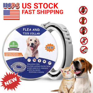 Flea-and-Tick-Collar-for-Large-Dog-Over-18lbs-8-Month-Protection-Pro-Guard-DEWEL