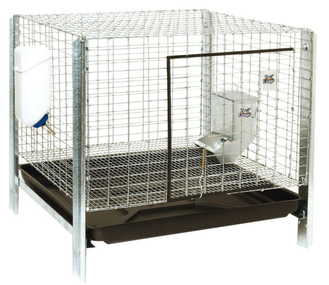 Rabbit Hutch Complete Kit Miller Mfg Co Cages Hutches Rhck1 084369010436 For Sale Online Ebay