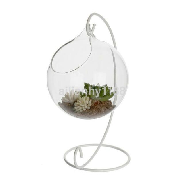 10cm Ball Shape Planter Hanging Glass Vase Flower Hydroponic Plant