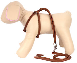 Rolled-Leather-Dog-Harness-Step-in-Leash-Set-Adjustable-Small-Puppy-Brown