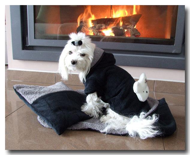 Luxus Bademantel für Hunde  Beste Qualität dogszone    Frotte Flausch   | Moderne und elegante Mode  390eeb