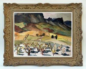 Decouverte-d-039-une-grande-painter-painting-vineyard-of-AGLY-has-Estagel-58