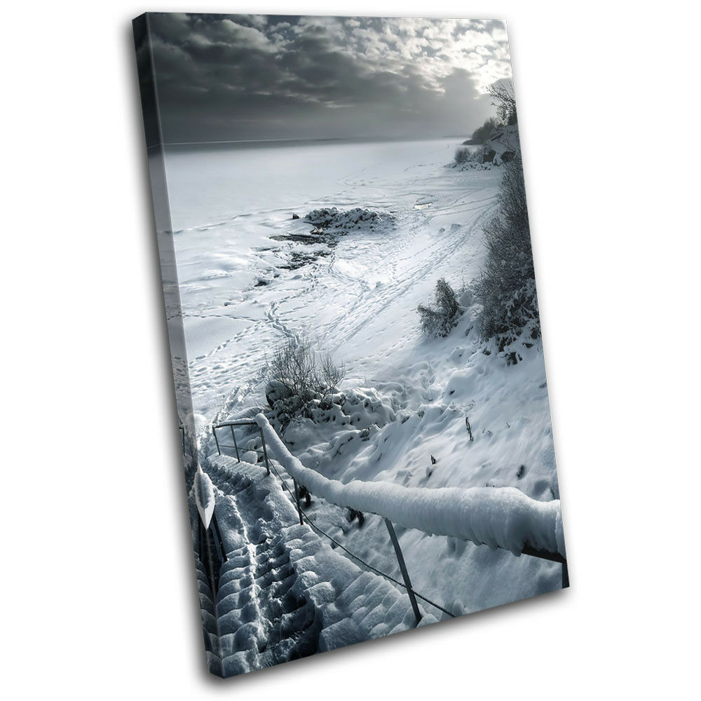 Scenic snow B & W Landscapes SINGLE TOILE murale ART Photo Print