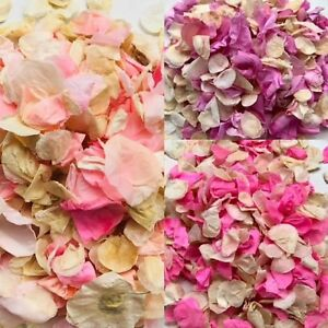 Rose-Petale-Biodegradable-Confettis-eco-naturelle-Mariage-Rose-Violet-palpite