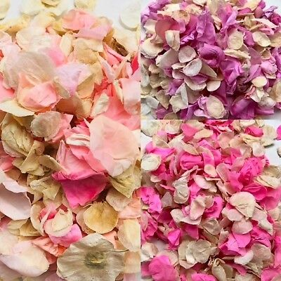 Biodegradable Confetti Wedding Petals Pink Rose Dries Natural Eco X 50 Packets