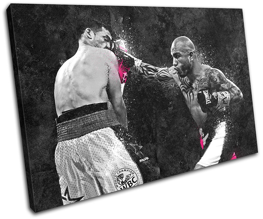 Miguel Cotto Boxing Grunge Sports SINGLE TOILE murale ART Photo Print