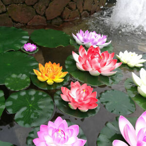 5X-Artificial-Lotus-Water-Lily-Floating-Flower-Pond-Fish-Tank-Plant-Garden-Decor