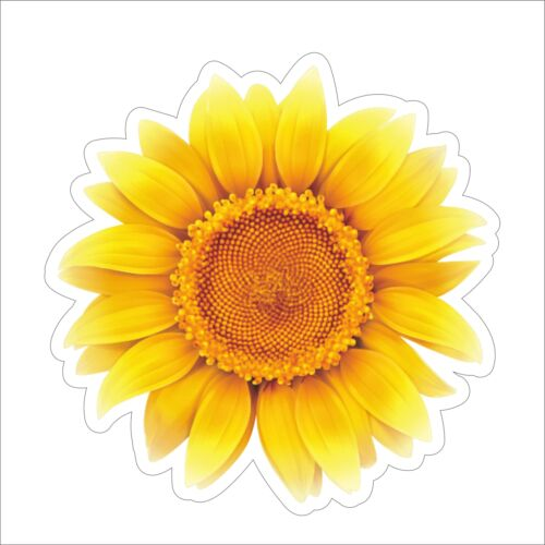 3M Graphics Sunflower Vinyl Helmet Tool Box Car Door Window Bumper Sticker Decal