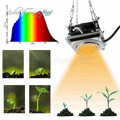 Gartenpflanze Solarfolie Reflective Hydroponic Leaf 210cmx120cm N1S7