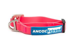 Ancol-Extreme-collar-de-perro-039-s-amp-conduce-Multi-Listado-Reflectante-Impermeable