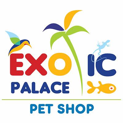 exotic-palace-pet-shop