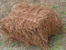 Bale of Longleaf Pine Needle Mulch, Longleaf Pine Straw Mulch, Premium Quality