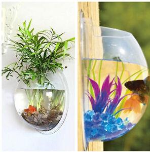 home wall mounted bowl aquarium wall hanging fish tank plant decor bubble pot ps ebay. Black Bedroom Furniture Sets. Home Design Ideas