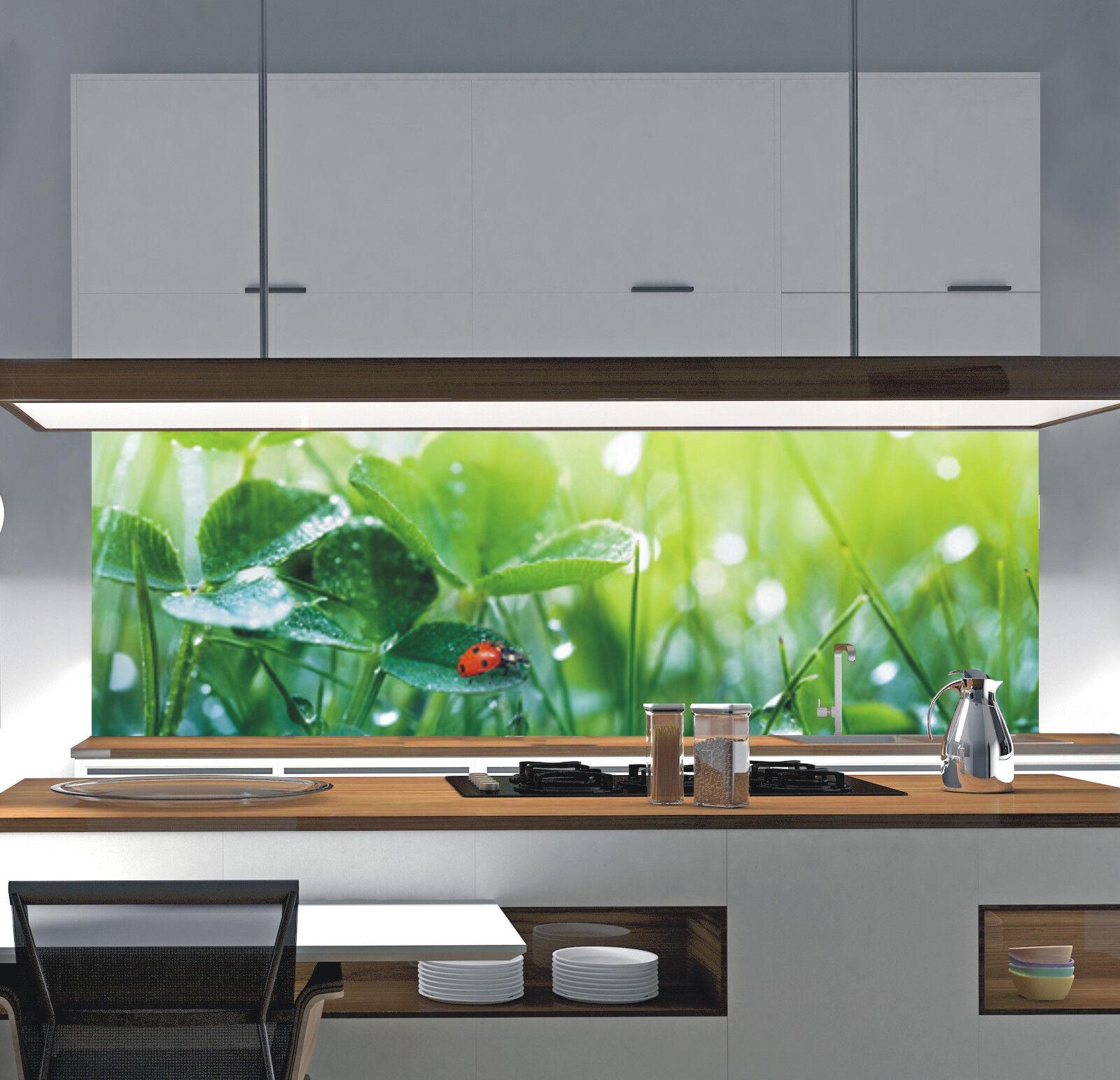 Küchenrückwand Acrylglas Spritzschutz nach Maß PLEXIGLAS ...