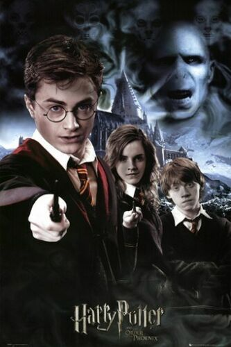 HARRY POTTER POSTER Order of the Phoenix RARE NEW 24X36