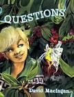 Questions by David Maclagan (Paperback / softback, 2013)
