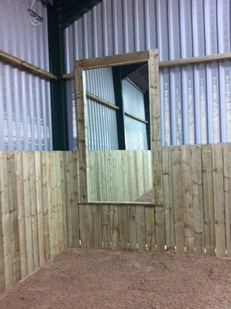 Equestrian Arena Mirrors from Beverley Brightman Dressage