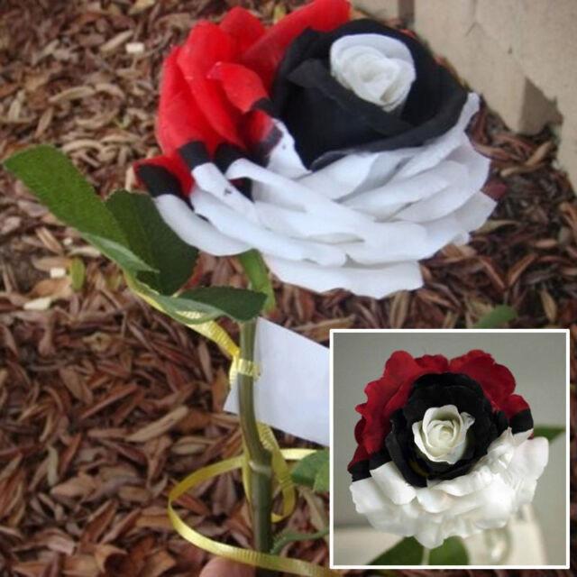 Red/White/Black Rose Exotic Flower Rose Seeds Rare Exotic Plant - AUS Stock