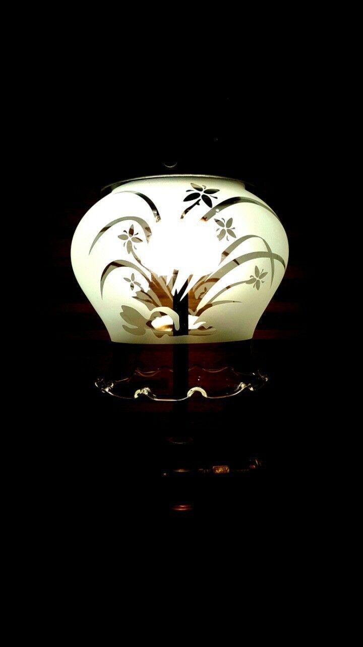 Tilley lamp glass, bialaddin, vapalux, Tulip Glass, orchid orchid orchid etched feac48