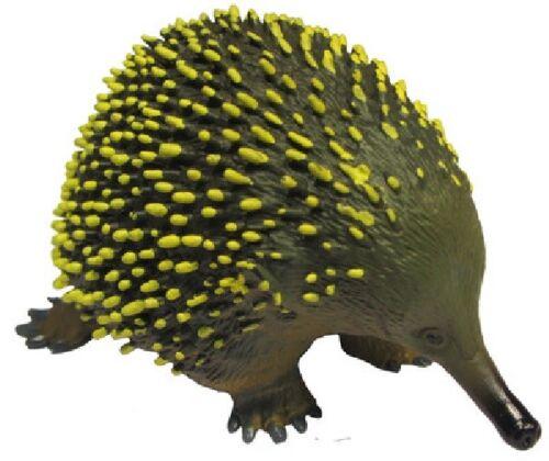 Echidna Échidné 9 cm Animals de Australie Science And Nature 75456