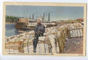 M23-Levee-Scene-Water-Front-Loading-Cotton-Stern-Paddler-Memphis-1933-Used