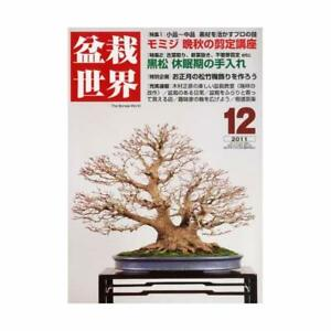 Bonsai-world-December-2011-issue-magazine