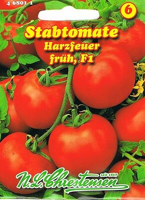 "Gemüsesamen 50 Samen Tomatensamen /""Roter saftiger Riese/"" Riesentomate ca"