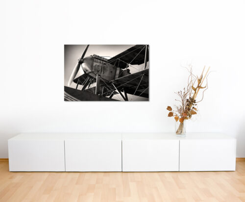 Wandbild Naturfotografie Altes Flugzeug aus den 1920ern auf Leinwand